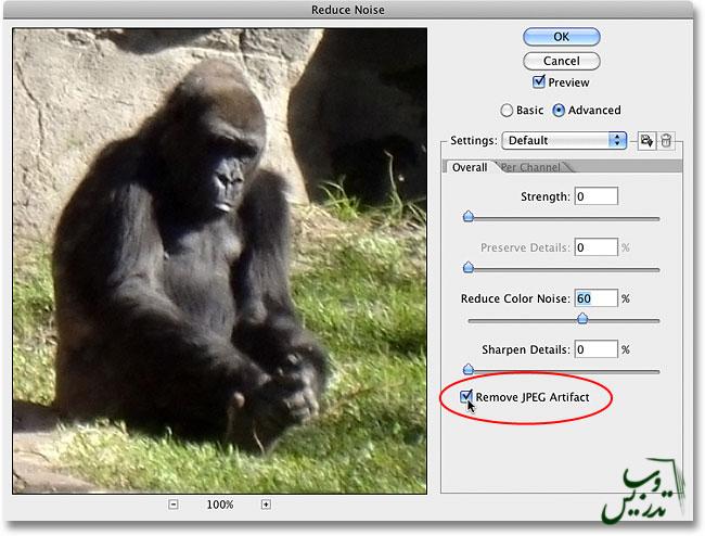 حذف انواع نویز از تصویر در فتوشاپ